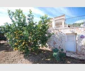 Garten Haus Shorta Mallorca