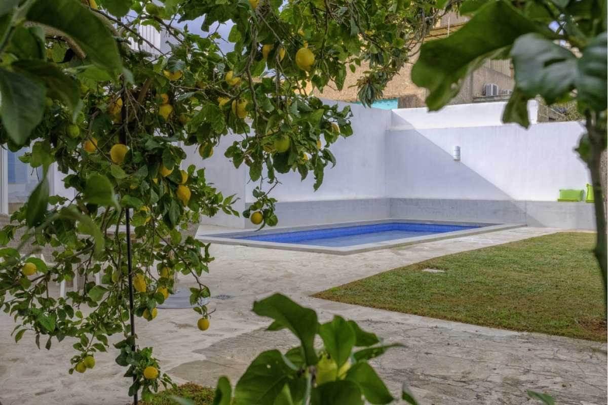 Pool mit Liegewiese im Stadthau Shorta